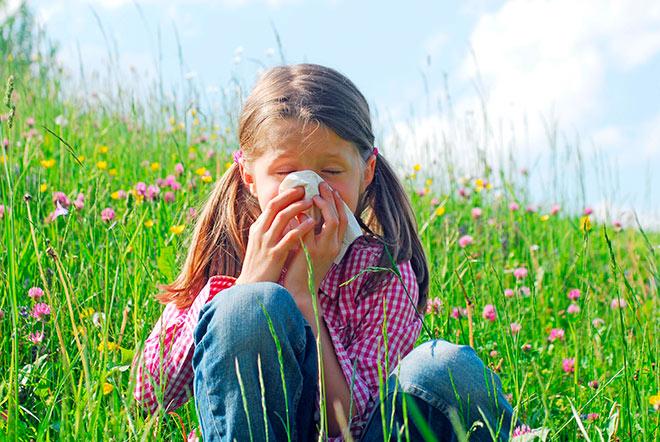 Аллергический ринит на пыльцу